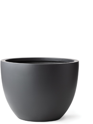 CI-1177-30 Bowl Series